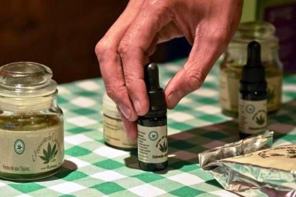 El Gobierno provincial proveerá cannabis medicinal