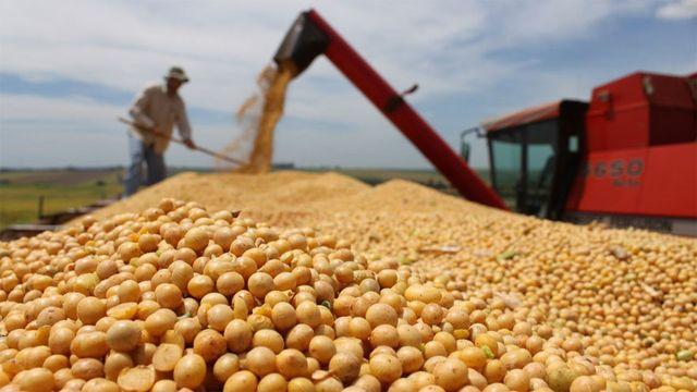 La Pampa exportó en 2018 por 382 millones de dólares