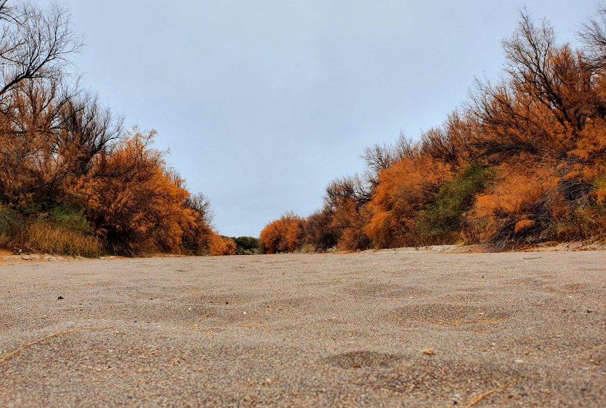 Fallo por el Atuel: La Pampa ahora va a pedir obras, mejorar el riego y la devolución de otro río