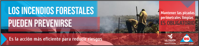 bannergobiernoincendios2020-3